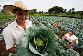 aposentadoria-trabalhador-rural-2